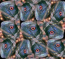 eye of the turtle  by James E. Thomas