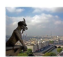 Gargoyle surveying Paris by shutterbug941