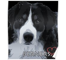 Berner love. Poster