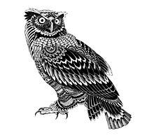 Ornate Owl Photographic Print