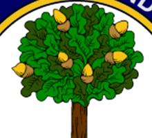Anderson Clan Badge Sticker