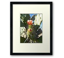 ©MS Lonely Flower IVA Framed Print