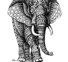 Ornate Elephant v.2 by BioWorkZ