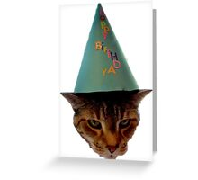 Cat In The Hat Greeting Card