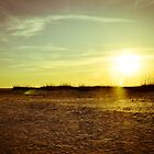 A gorgeous Florida sunset complete with sand dunes by jenbucheli
