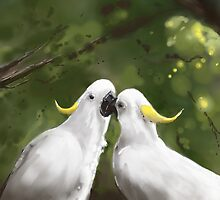 Cockatoo Love  by John Taylor