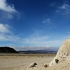 Looking Away at the Trona Pinnacles by Corri Gryting Gutzman
