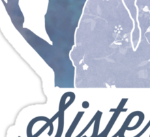 Sisters Before Misters Sticker