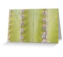 Green Cactus closeup - nature macro Greeting Card