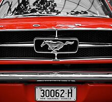 Mustang Sally by D-GaP