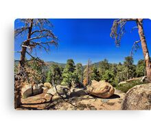 A Great Place to Picnic Canvas Print