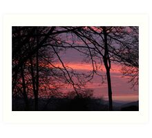At the edge of Fangorn Forest - 11 Art Print