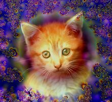 Kitten Portrait by Brian Exton