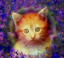 Kitten Portrait by Brian Exton