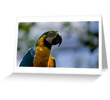 vibrant view By Ken Killeen Greeting Card