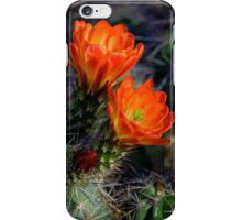 """ Desert Color "" iPhone Case/Skin"