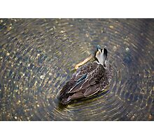 ripple effect By Ken Killeen Photographic Print