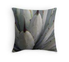 Agave Thorns -Cactus Macro, Natural Pattern h Throw Pillow