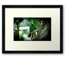 karma chameleon By Ken Killeen Framed Print