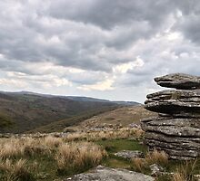 Dartmoor Tor by emyyewuk
