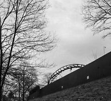A bit of a roller coaster. by Gabriele Maurus