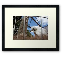 free cage By Ken Killeen  Framed Print