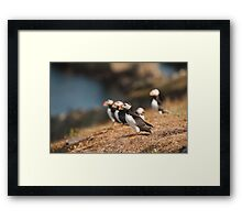 Ready For Take Off Framed Print