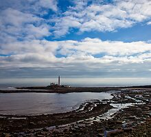 St Mary's Island and Lighthouse by Violaman