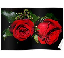 Red roses Poster