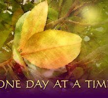 One Day at a Time Magnolia Leaves by serenitygifts