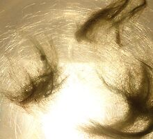 Hair on projector. I by Kathryn Anne Trussler