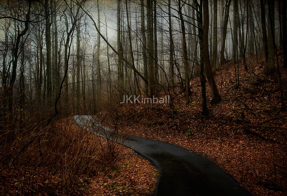 Early Spring in Balsam Forest by JKKimball