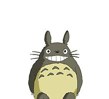 Great Totoro by mag13
