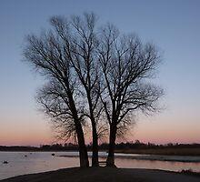 lakeside dawn by lukasdf
