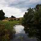 Richmond Bridge and the Coal River by Odille Esmonde-Morgan