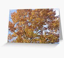 Autumn in RI Greeting Card