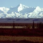 Alaska Range - Denali National Park - Alaska by Harry Snowden