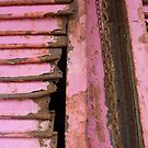 Rustic Pink  by clizzio