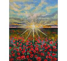 Starlight Poppies Photographic Print