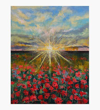 Starlight Poppies Photographic Print