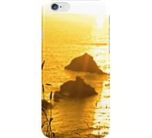 beautiful sunset over the virgin rock with wild tall grass iPhone Case/Skin