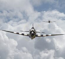 P47-D  Thunderbolt by warbirds