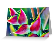 Tropical Heliconia Greeting Card