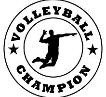 Volleyball Champion by kwg2200