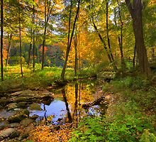 Early Autumn by Bill Wakeley