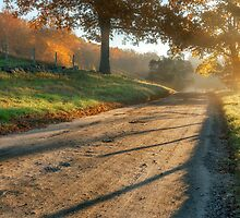 Back Road Morning by Bill Wakeley