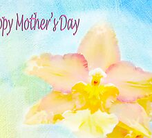 Happy Mother's Day Peach Cattleya Orchid by daphsam