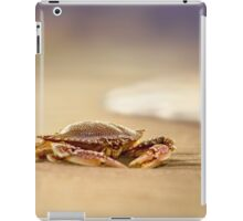 Crab Charybdis iPad Case/Skin