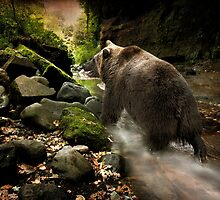 Bear Creek by peaky40
