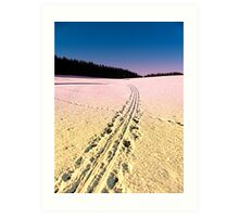 Cross country skiing | winter wonderland | landscape photography Art Print